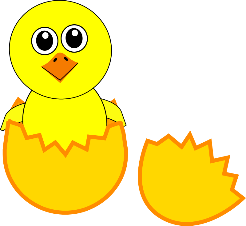 Funny Chick Cartoon Newborn Coming Out from the Egg