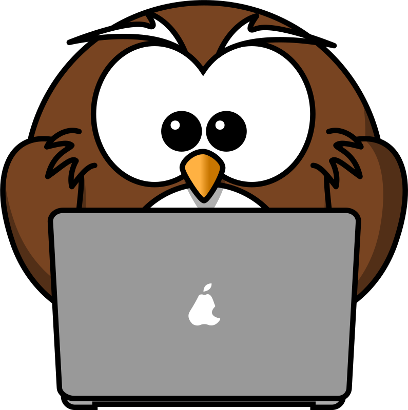 Owl with notebook