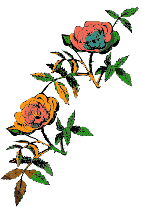 Rose decoration in color