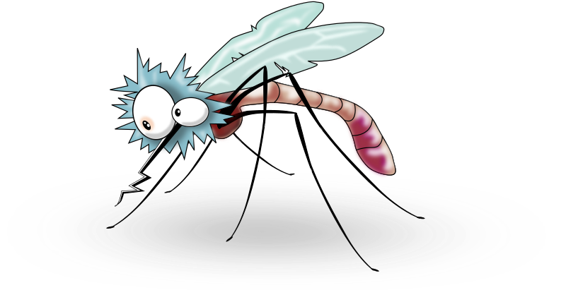 Funny Mosquito from side