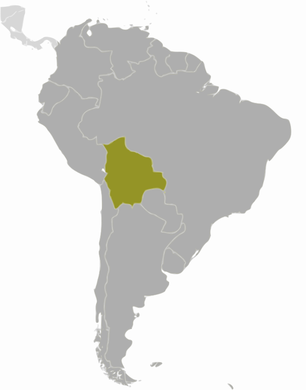 Bolivia location