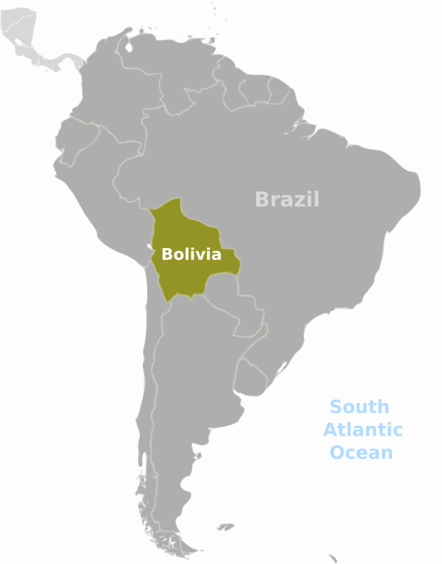 Bolivia location label