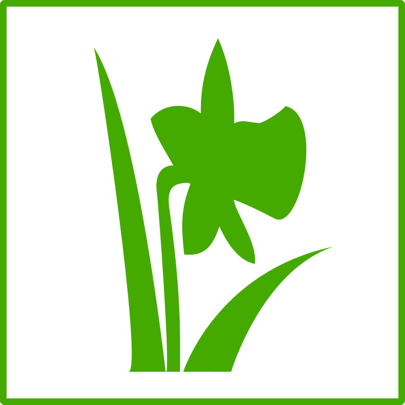 Eco green flower icon