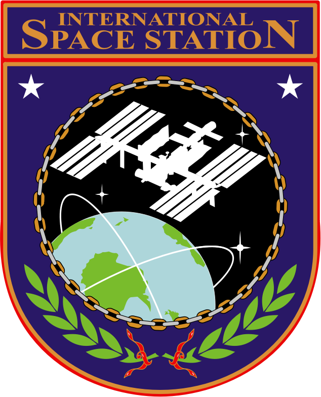 ISS Insignia