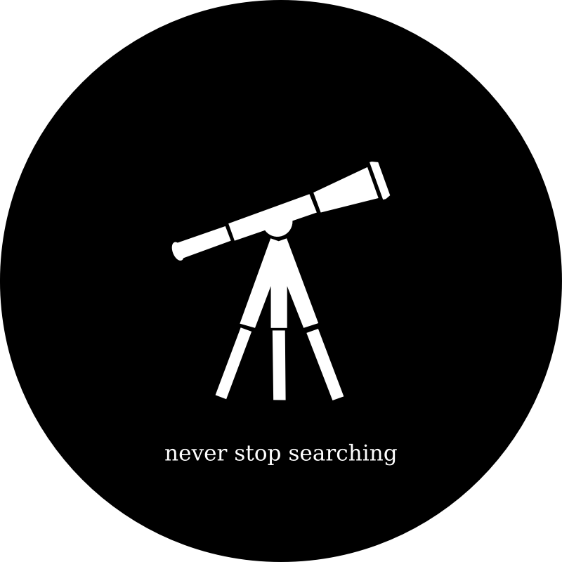 Never Stop Searching
