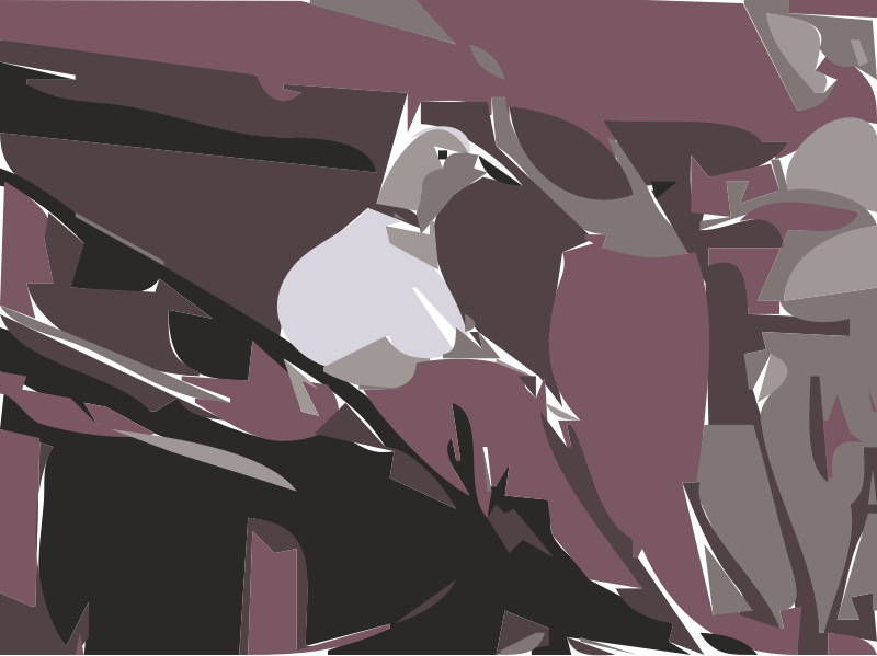 Lovey the Dove Pigeon