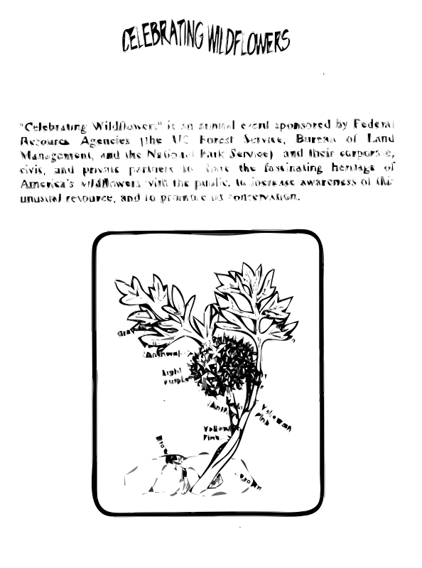 Ballhead Waterleaf Coloring Guide