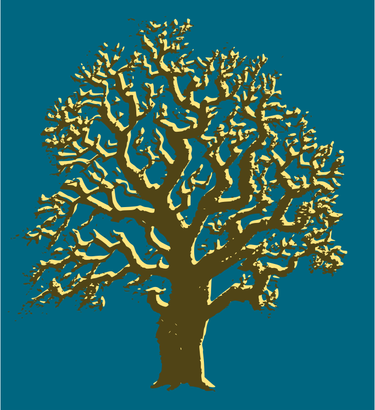 Oak Tree - 3 Colours