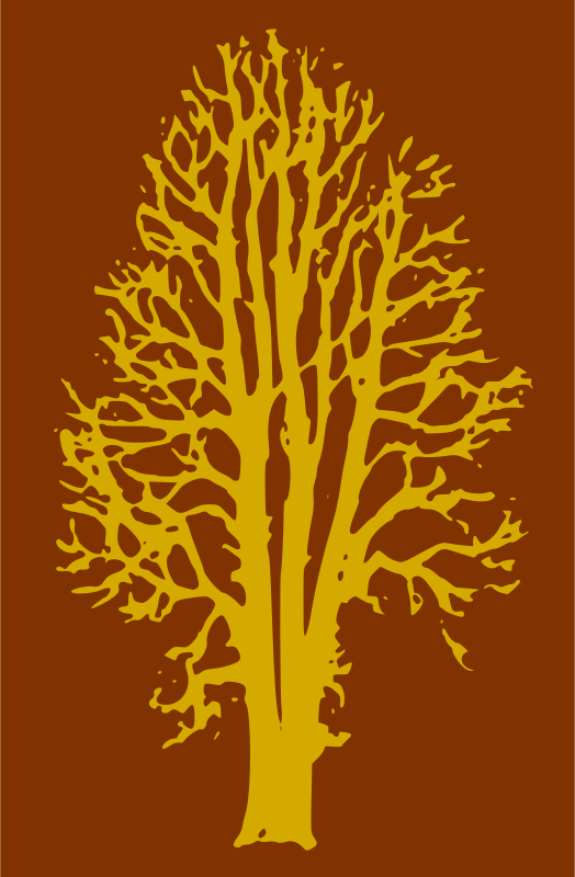 Beech Tree - 2 Colours