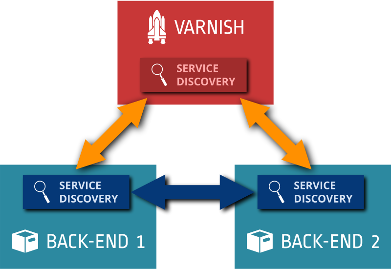 Varnish with service discovery agents