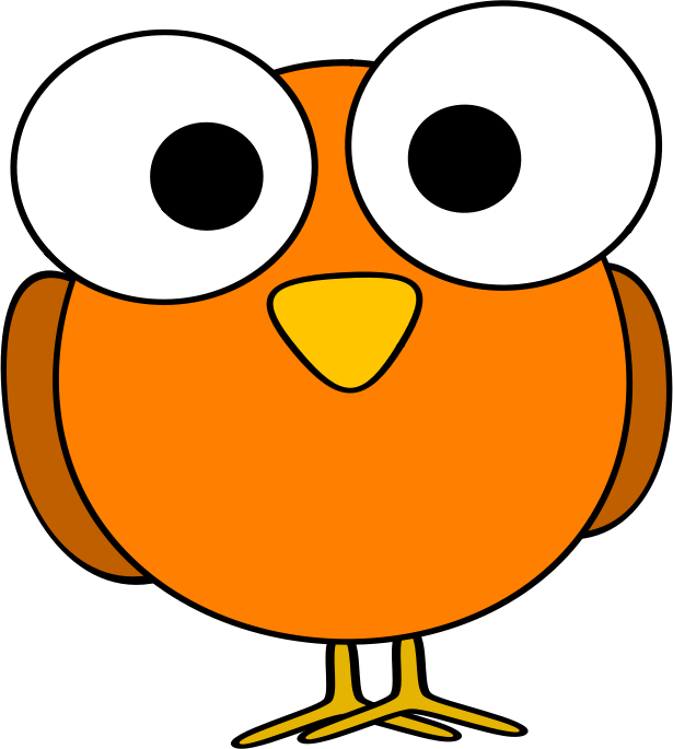 Orange googley-eye bird