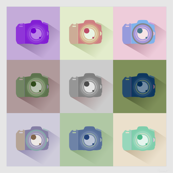 SLR Digital Camera Icons Inverted Color Study