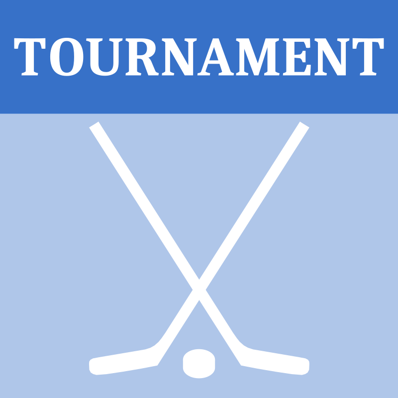 Hockey Tournament Icon