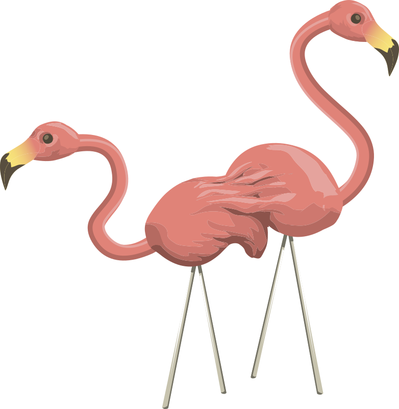 Inhabitants Npc Flamingo