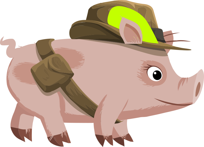Inhabitants Npc Piggy Explorer