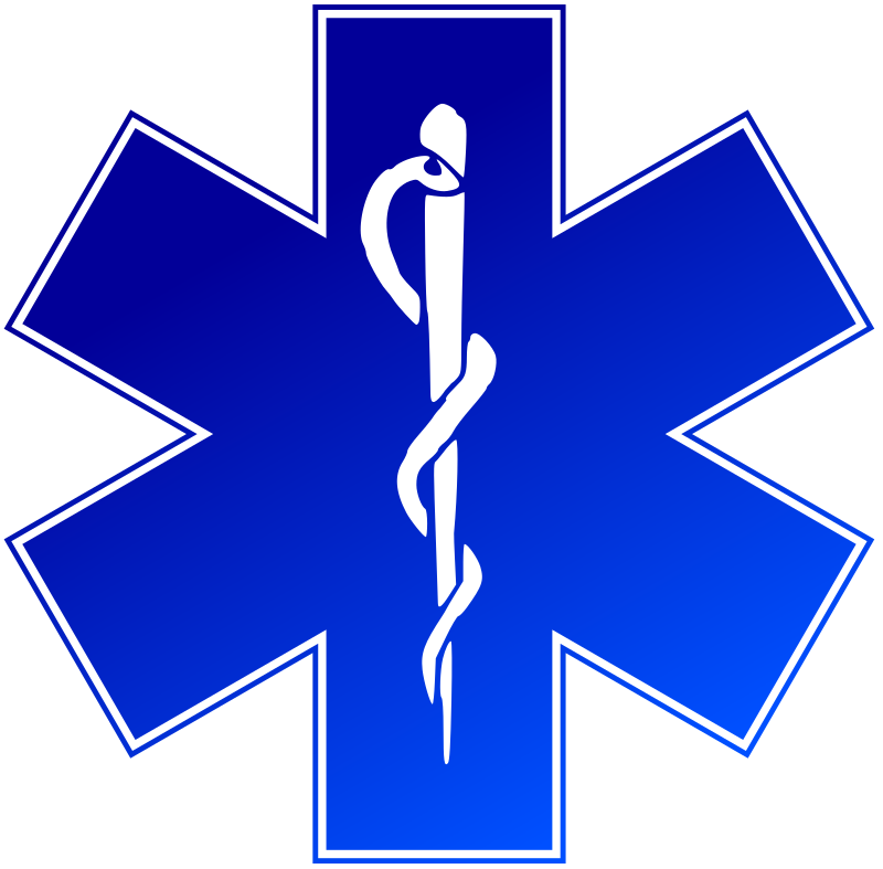EMS (emergency medical service) logo