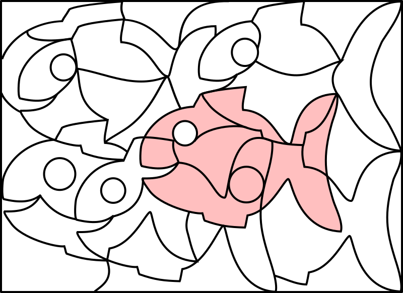 Solution Image Fish