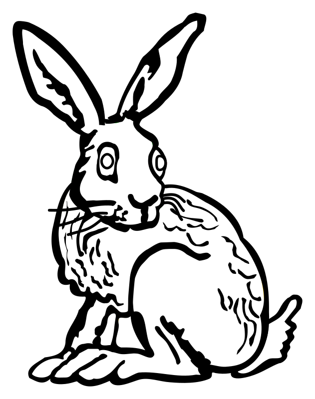 hare - lineart