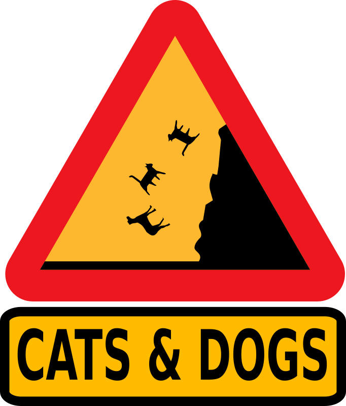 Falling cats and dogs
