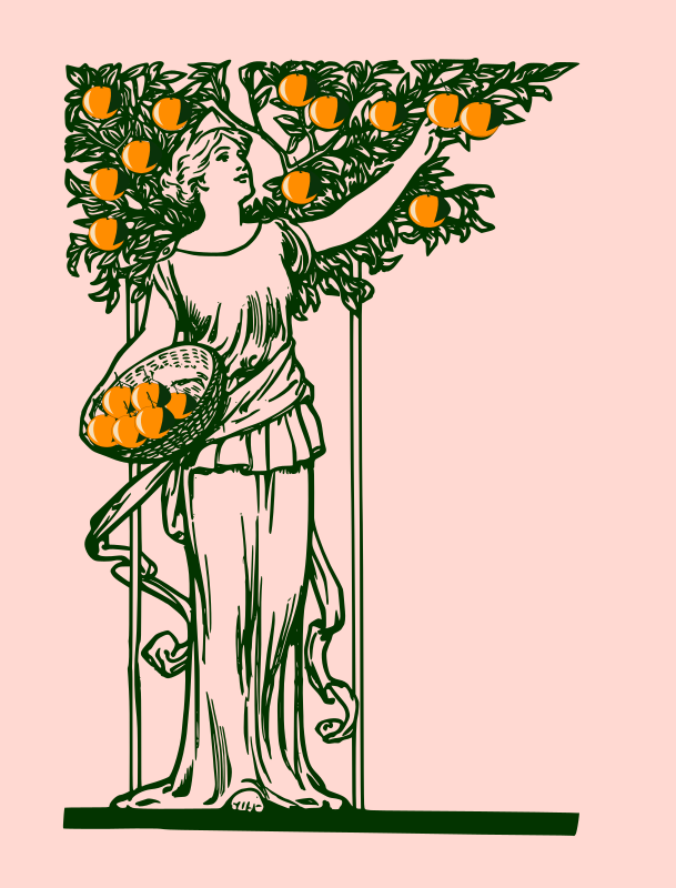 lady picking oranges-remix