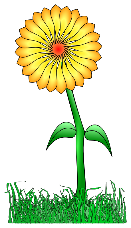 Flower for a friend