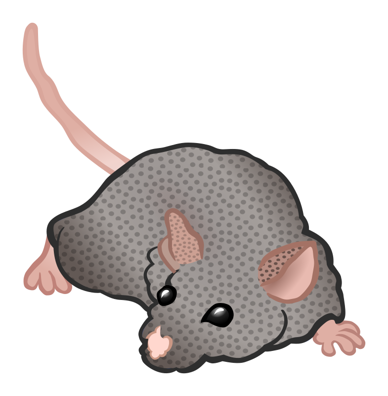 mouse - coloured