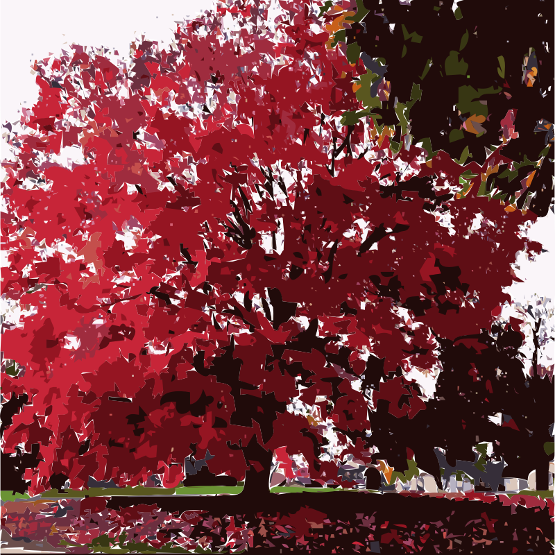 Fall Tree-Red