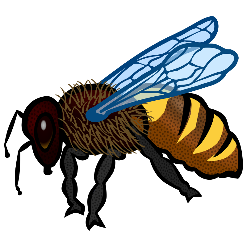 Bee (colour)