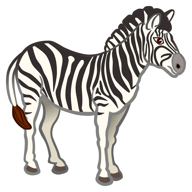 zebra - coloured