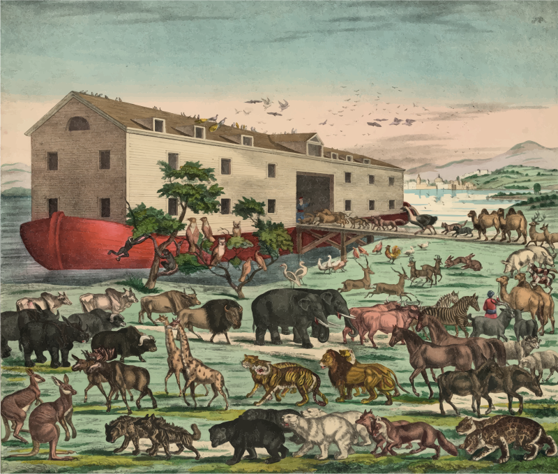 Noah's Ark Illustration