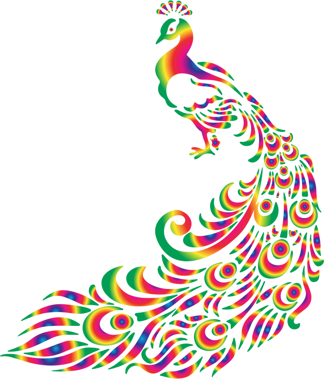 Colorful Peacock 2