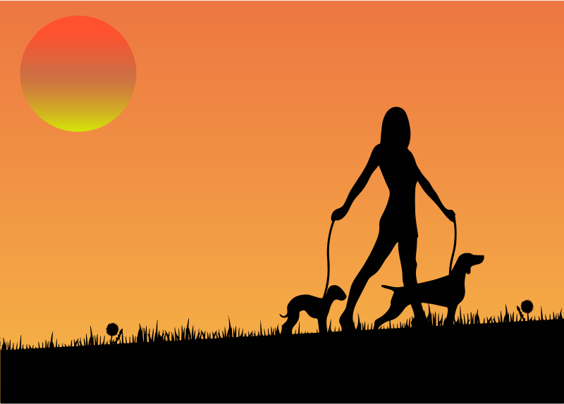 Woman Walking Dogs At Sunset
