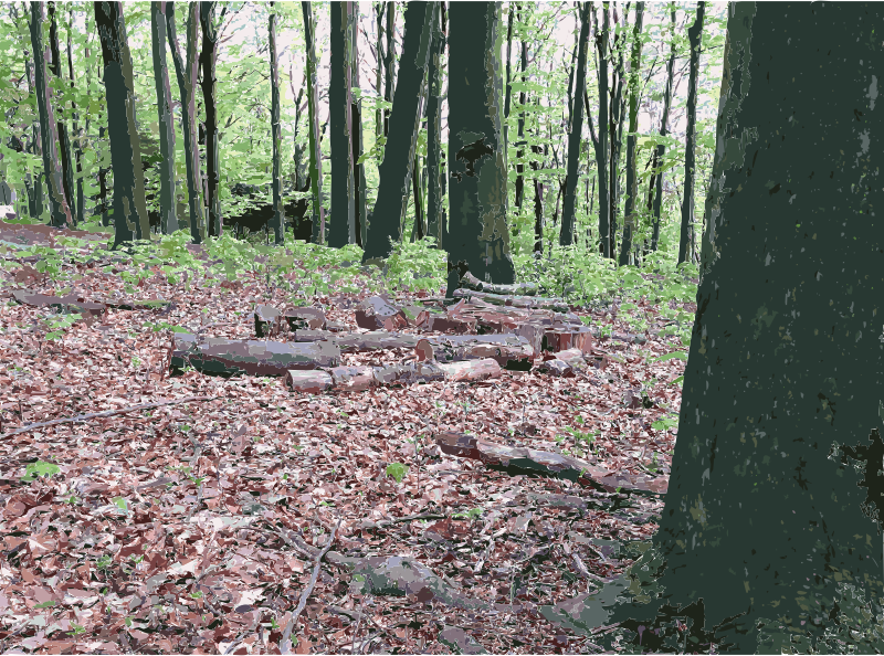 Sculpture Park Waldfrieden 1