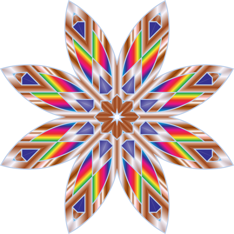 Colorful Flower Star