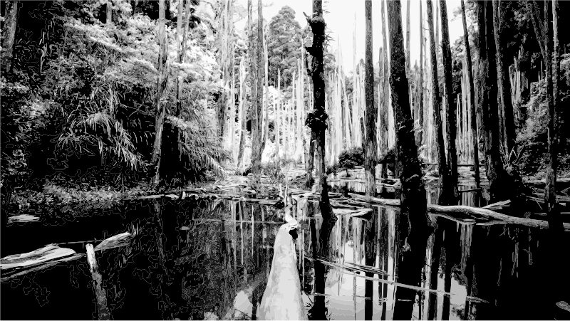 Swamp Grayscale