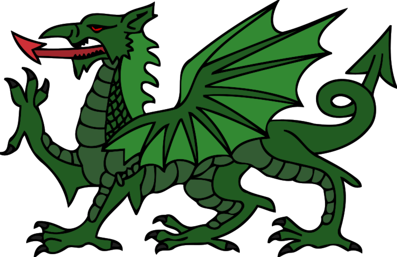 Stylised Dragon (colour)