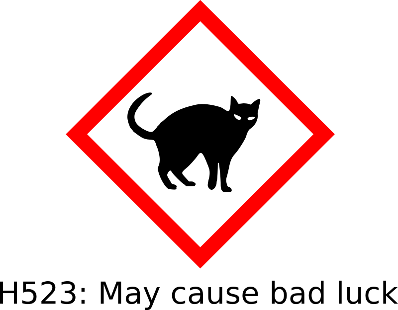 Black cat hazard