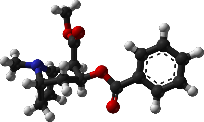 Famous (and infamous) molecules 6 - cocaine