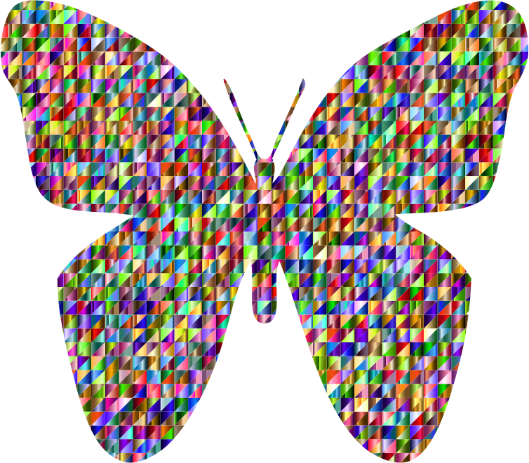 Chromatic Triangular Retro Floral Butterfly