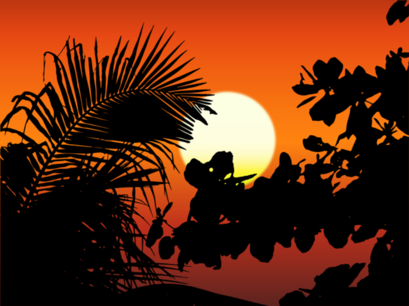 Vegetation Silhouette Sunset