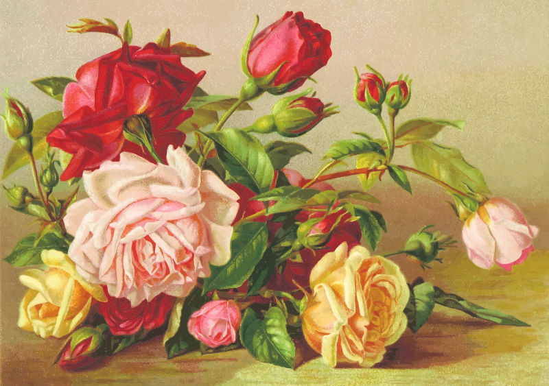 Roses (detailed)