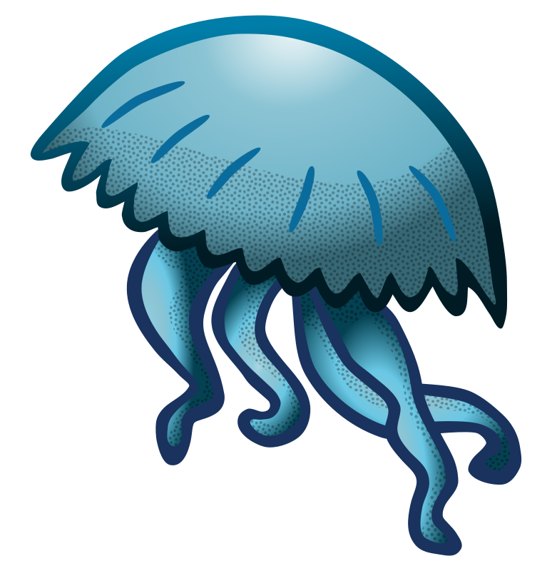 jellyfish - coloured