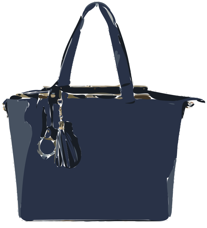 Blue Flat Leather Bag