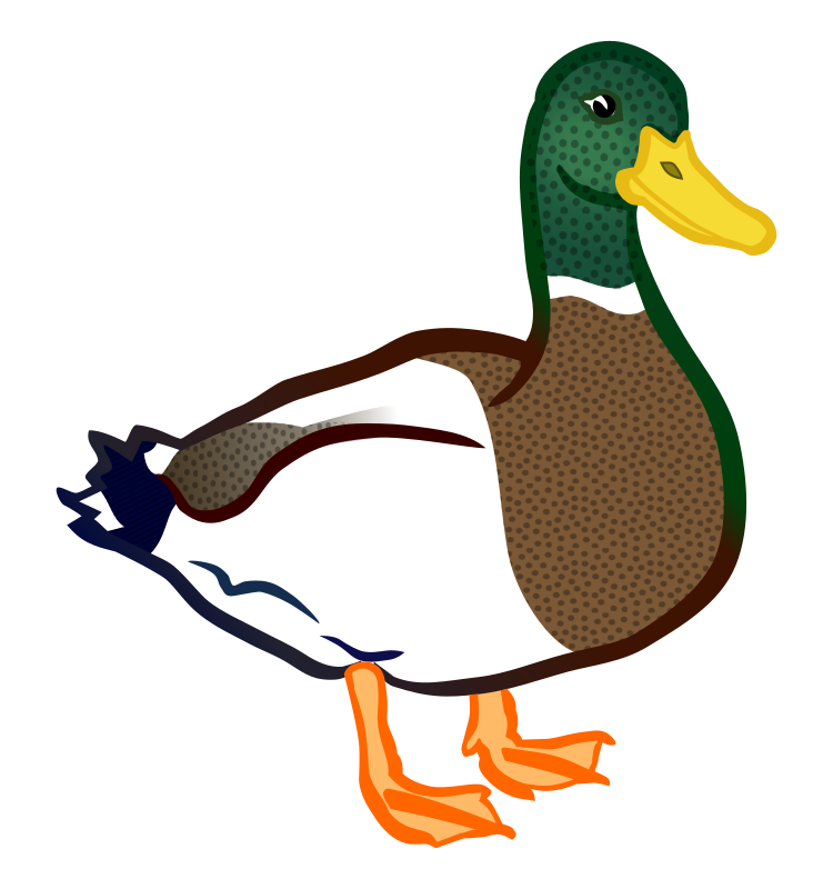 duck - coloured