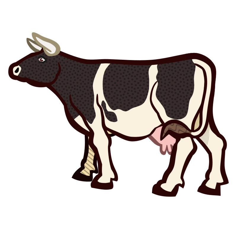 cow2 - coloured