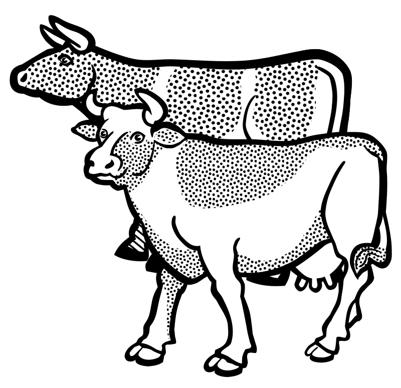 cows - lineart