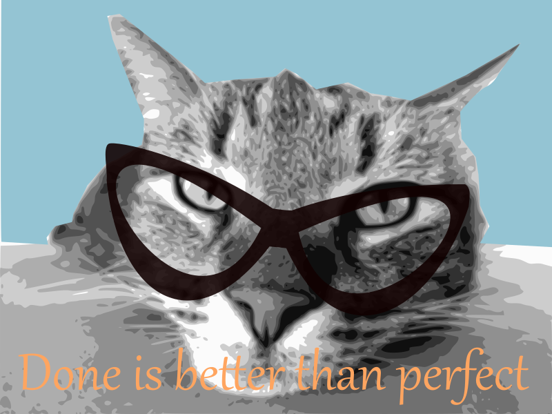 cat with eyewear
