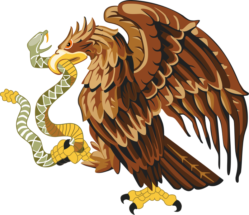Golden eagle with snake