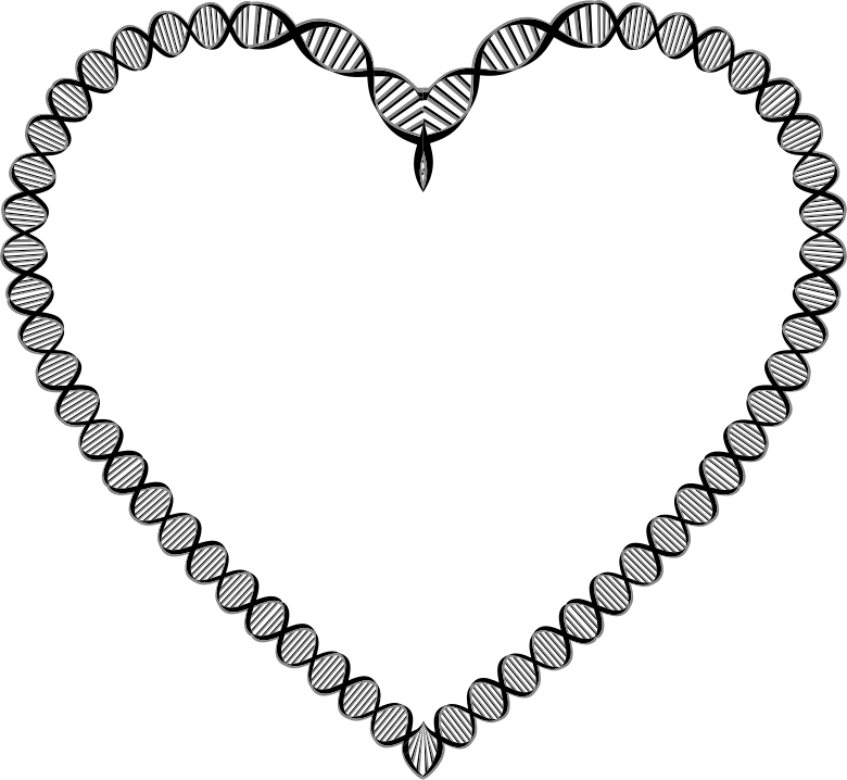 DNA Heart Variation 2