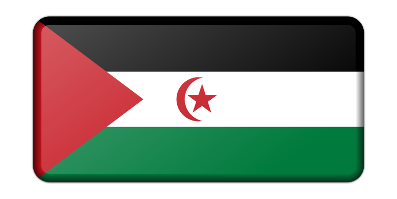 Sahrawi Arab Democratic Republic flag (bevelled)
